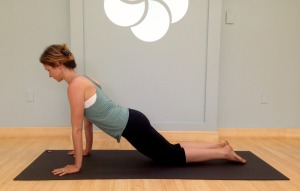 Modified Plank Pose