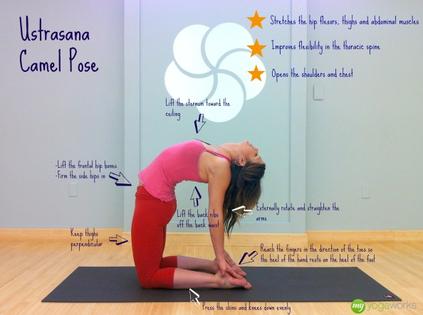 Yoga Videos online by MyYogaWorks