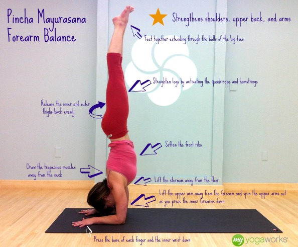Yoga Video Online, Pincha Mayurasana